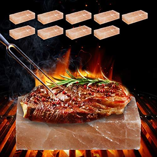 Relaxdays 10 x Gourmet Salzstein zum Grillen, köstliches Aroma, BBQ Grillstein, Profi Himalayasalz, Backofen, 20 x 10 x 5 cm, rosa