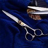 Friseurscheren Haarschere Schneideschere Stylist Schere zum Friseur, Salon, Zuhause oder Reisenutzung 6,0 Zoll