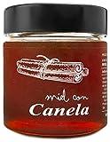 Miel con Canela - 100% Natural Pura de Abeja, Cruda, 300gr - Origen: El Bierzo, España