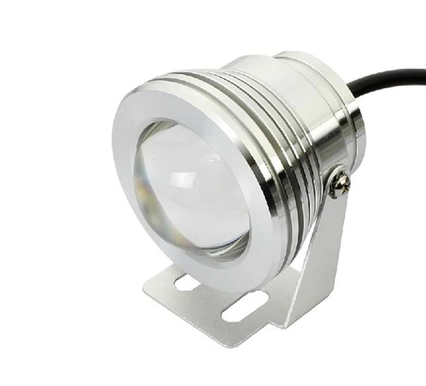 飼い慣らす本物の量でハイパワー LED プロジェクター ライト フォグランプ 10W 12V ステージ スポットライト 各種 照明