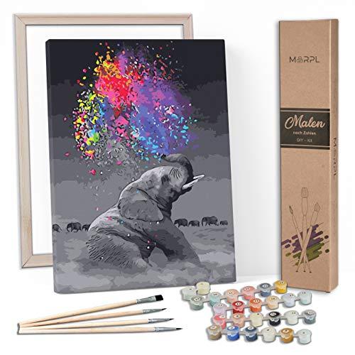 MARPL® Malen nach Zahlen Erwachsene [DIY-Kit] mit Rahmen - Malset mit vorgedruckter Leinwand für Gemälde Acrylfarben Kreativ Motiv 40 * 50cm Elefant Farbe