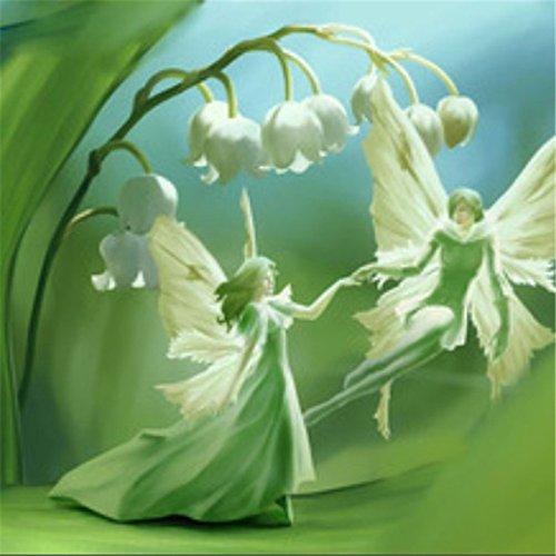 10 graines / pack Lily des graines Vallée de fleurs, graines cloche d'orchidée, l'arôme riche, graines bonsaï de fleurs, si mignon et beau