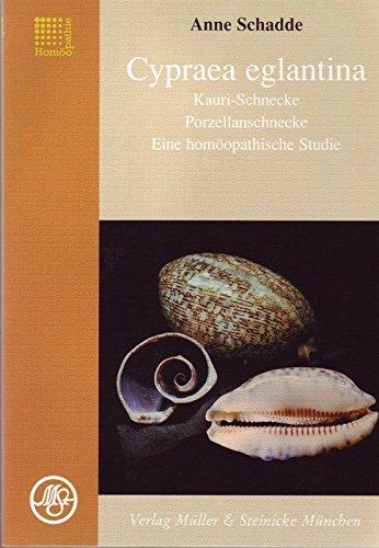 Cypraea egliantina, Kauri-Schnecke - Eine homöopathische Studie