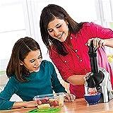 Duwen Máquina de helado de la fruta de la fruta del hogar respaldable portátil, máquina de yogurt congelado electrónico sorbete con temporizador de cuenta regresiva, postre de fruta congelada