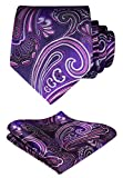 Hisdern Herren Krawatte Hochzeit Blumen Paisley Krawatte & Einstecktuch Set Purpur Rosa