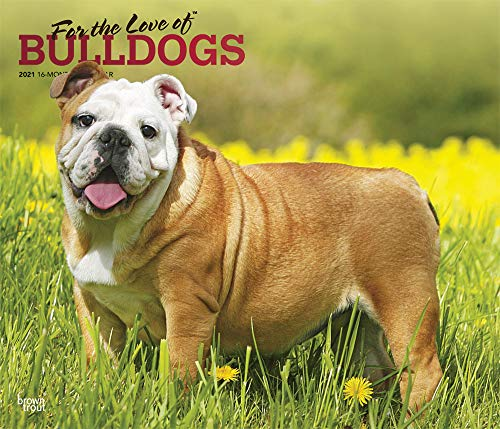 For the Love of Bulldogs 2021 14 x 12 Inch Monthly Deluxe Wall Calendar with Foil Stamped Cover, Animal Dog Breeds