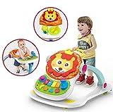 GHDE& 4 in 1 Faltbar Kleinkind Stand Lernen Kinderwagen Multifunktional Anti-Rollover Lauflernhilfe für 6-18 Monate Mädchen & Jungs