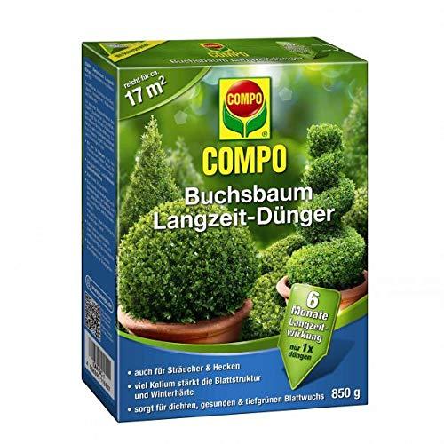 Compo Buchsbaum Langzeit Dünger | 6 Mo. Langzeitwirkung | Spezialdünger für alle Buchsbaumarten und Hecke