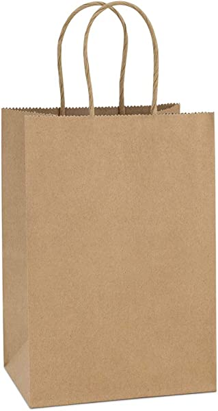 BagDream Kraft Paper Bags 100Pcs 5 25x3 75x8 Inches Small Paper Gift Bags With Handles Bulk Paper Shopping Bags Kraft Bags Party Bags Brown Bags
