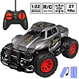 Remote Control Car - Durable Non-Slip Off-Road Shockproof RC Racing Car (Gray) RC Toys Car for Kid 3 4 5 6 7 8 9 Year Old Boys and Girls Best Gifts…