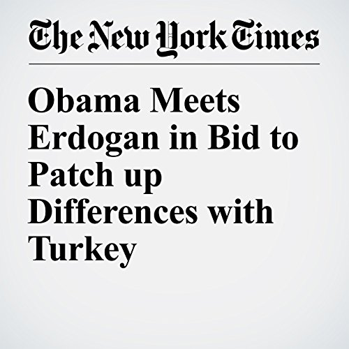 Obama Meets Erdogan in Bid to Patch up Differences with Turkey cover art