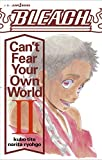 BLEACH Can't Fear Your Own World ライトノベル 1-2巻セット