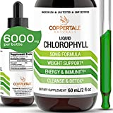 Chlorophyll Liquid Drops for Water 6000mg Per Bottle | Skin Health Acne & Energy Supplement, Immune Support, Natural Deodorant, Altitude Sickness Relief | Non GMO & Vegan Friendly - 120 Servings