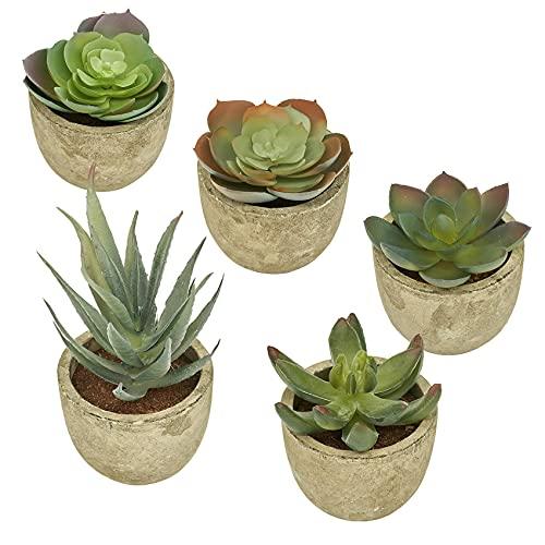 GaoTuo Plantas Artificiales Suculentas Plásticas Planta pequeñas en Maceta para decoración del hogar o la Oficina Decorativa en Maceta Oficina en Casa Paquete de 5(5#Plantas en macetas)