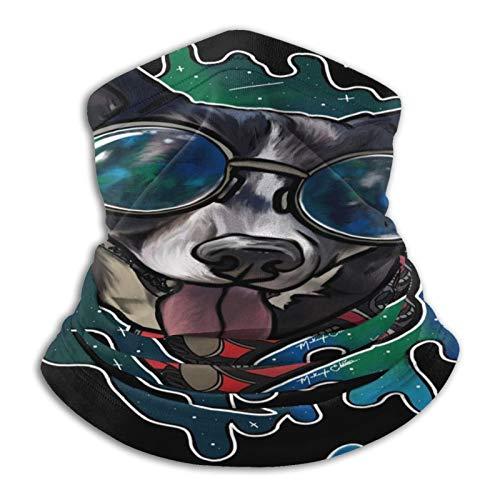 Cool Dog Gafas de sol collar unisex al aire libre calentador de cuello a prueba de viento máscara facial bandana capucha sombreros