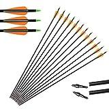 Huntingdoor Caccia Frecce,12 x 31' Frecce in Fibra di Vetro Frecce per bersagli Punte Sostituibile a Vite Target Practice per Ricurvo e Arco Compound ad Alta Resistenza (Giallo)