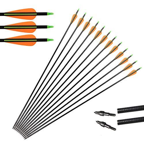 Huntingdoor Caccia Frecce,12 x 31 Frecce in Fibra di Vetro Frecce per bersagli Punte Sostituibile a Vite Target Practice per Ricurvo e Arco Compound ad Alta Resistenza (Giallo)