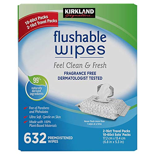 Kirkland Signature Moist Flushable Enhanced Cleansing & Freshness Ultra Soft Hypoallergenic Plant-Based Wipes - 632 Count