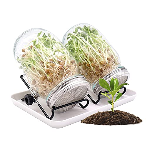 Jooheli Germoir en Verre,Lot de 2 Sprout Jar 1000 ML,Kit de 2 Bocaux de Germination avec Couvercles en Acier Inoxydable,pour la Culture de Germes de Microgreens,Luzerne,Brocoli