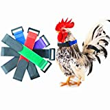 6 Pack Upgrade Anti Crow Rooster, Collar Crow Rooster Collar Crow Collar, Chicken Neckband Noise Free No Crow Neck Belt Anti Noise Nylon Neck Belt for Prevent Chickens from Screaming