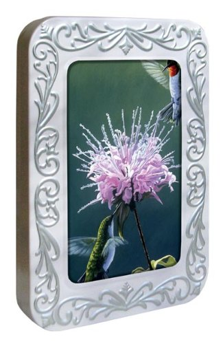 Tree-Free Greetings Noteables Notecards In Reusable Embossed Tin, 12 Card Assortment, Recycled, 4 x 6 Inches, Hummingbird Treat, Multi Color (76021)