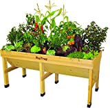 VegTrug Raised Bed Planter