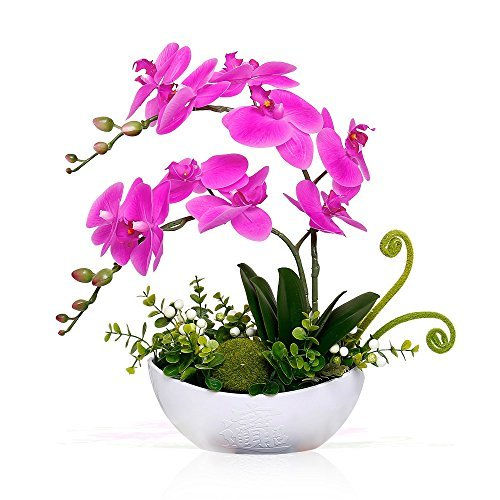 YILIYAJIA Artificial Phalaenopsis Orchid Bonsai Fake Flowers with Vase Arrangement 5 Head PU Bonsai for Home Table Decor(White Vase)