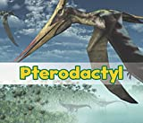 Pterodactyl (All About Dinosaurs)