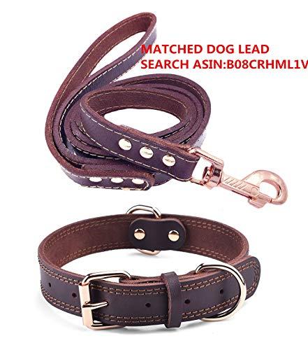 Premium-Hundehalsband aus Leder, mit graviertem Namensschild, personalisierbar, weiche Haptik, strapazierfähiges Echtleder, verstellbar, perfekt für kleine, mittelgroße, große Hunde - 3