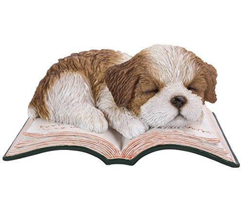Dehner Dekofigur Shih Tzu Hund auf Buch, ca. 18 x 12 x 9 cm, Polyresin, braun/weiß