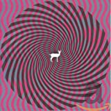 Songtexte von Deerhunter - Cryptograms