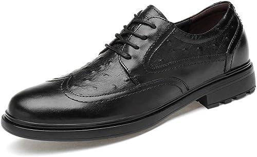 Wanlianer Chaussures en Cuir pour pour pour Hommes Mode Oxford Confortable personnalité Texture Faible-Top Chaussures Richelieu à Lacets Chaussures Oxford d'affaires (Couleur   Noir, Taille   40 EU) b1f
