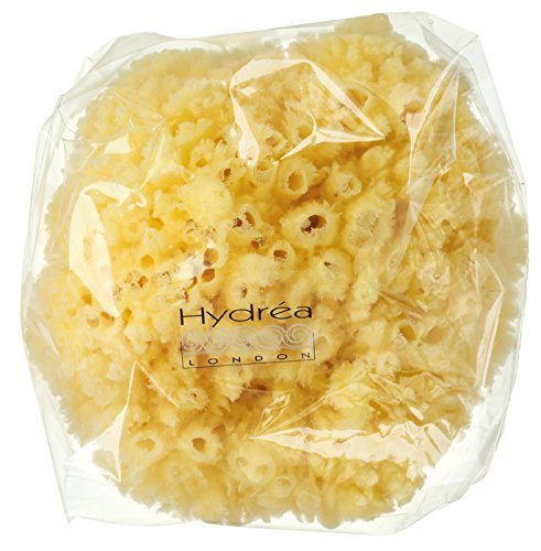 Natural Sea Sponge, Exfoliating Bahamas Grass Sponge 8.5cm / 3.5 by Natural Sea Sponge