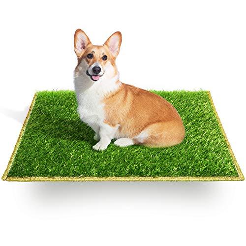 Hompet Hundegras Pee Pad Säumen Design, Hundetraining Pad, Ersatzgras für Hundetoilette, Kunstrasen Rasen, Welpen Töpfchen Pad Grasmatte, Innen- und Außenbereich 46cmx59cm