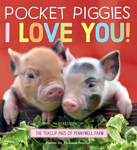 Pocket Piggies: I Love You! (Teacup Pigs of Pennywell Farm)