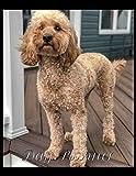 Day Planner: Dog
