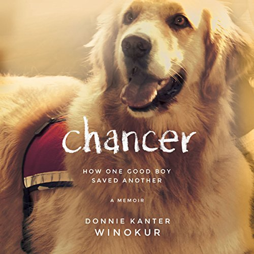 Chancer audiobook cover art