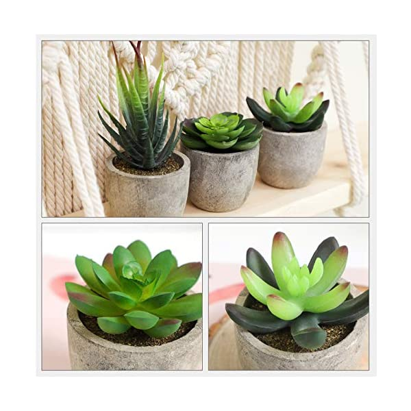 SONGMICS Plantas Suculentas Artificiales en Maceta, 5 Piezas, Plantas Decorativas, Plantas de Casa Falsas para Sala…