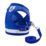 Arnés para Gatos con Correa,Nesloonp Reflectante Ajustable Pequeña Vest Harness para Correr, Correas de Entrenamiento para Gatos, Cachorros, Mascotas Pequeñas (M, Azul)