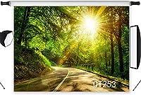 写真撮影のための新しい自然の風景の背景7x5ftポリエステル生地金の太陽光線結婚式のパーティーの肖像画のための風光明媚な道路の背景を照らす写真ブースの背景シームレスな洗える