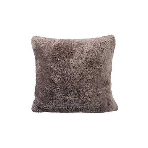 Coussin Taupe 40 x 40