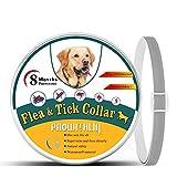 Collare Antipulci per Cani, Collare Antipulci Naturale per la Sicurezza dei Cani - Collare Anti Zecche regolabile, Collare Antipulci per Cani Waterproof - 8 Mesi di Protezione, Taglia Unica per Tutti