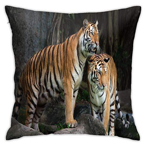 Traveler Shop Funda de Almohada Tiger Couple in The Jungle On Big Rock Protectores de Almohada Fundas de Almohada estándar, 18 x 18 Pulgadas