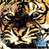Eye of the tiger by Survivor (1990-07-28)