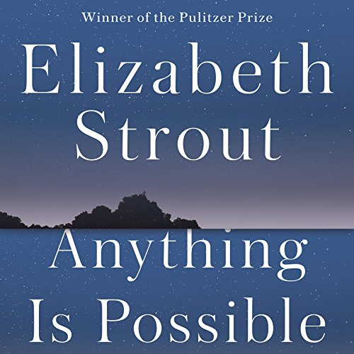 Anything Is Possible audiobook cover art