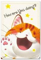 笑顔を届けるイラストレーション・猫作家Megポストカード 「ご機嫌いかが」