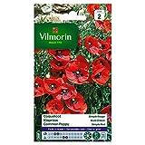 bolsa de semillas Simple Amapola Roja Vilmorin