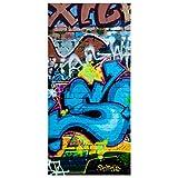 Bilderwelten Raumteiler Colours of Graffiti 250x120cm inkl. transparenter Halterung