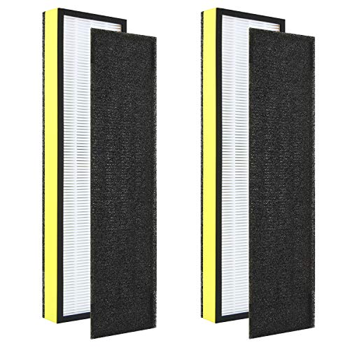 DerBlue 2pcs Premium True HEPA Filters and 2pcs Pre-Filters Compatible with GermGuardian Air Purifier Models AC4300/AC4800/AC4900/AC4825 and Replacement FLT4825 Filter B