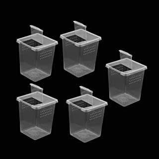 FLAMEER 2/3 / 4 szt. Plastic Insect Spider Habitat pudełko na karmę kontener 3x3x4 cali - 5 szt.